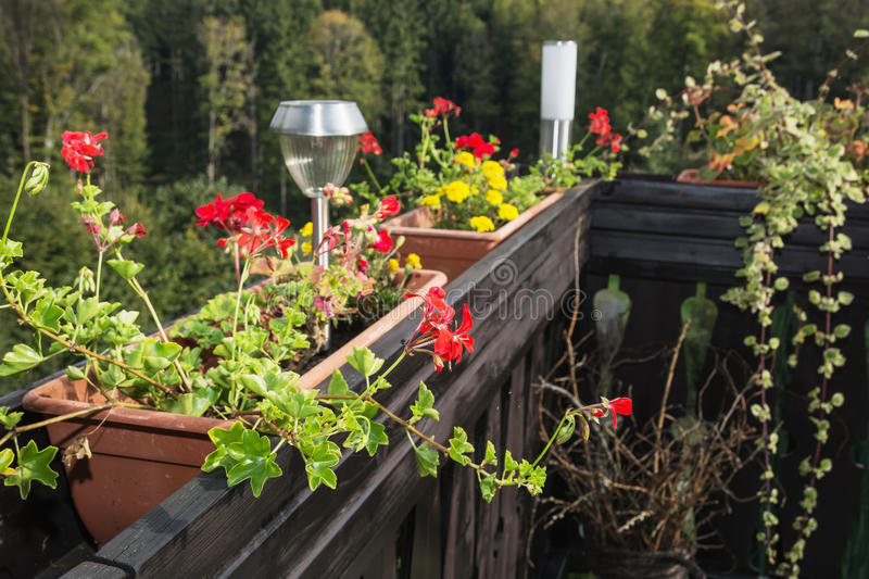 Flowerpot full of flowers and decorative lamp. On the wooden railing royalty free stock photo