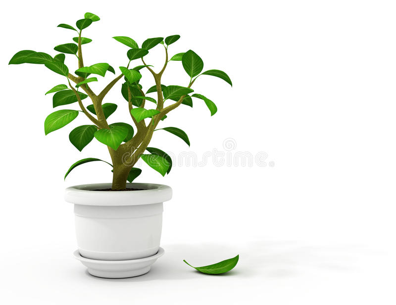 flowerpot garnka biel ilustracja wektor