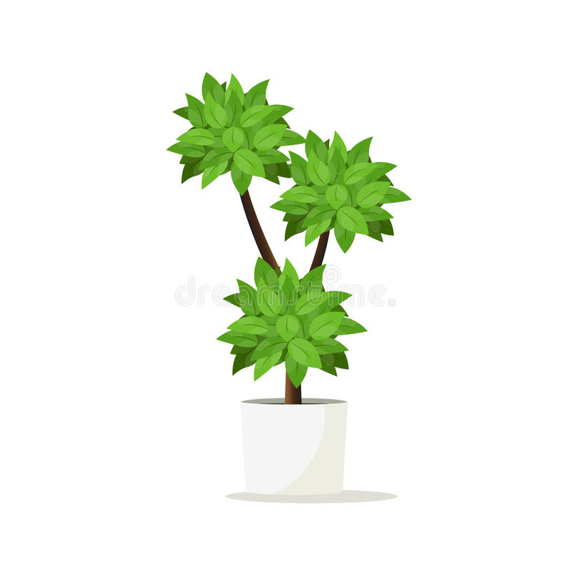 Flowerpot for home gardens, park and room decoration. Vector illustration royalty free illustration