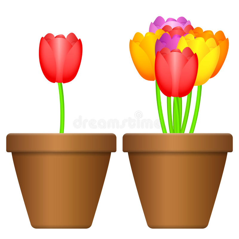 Flowerpot i tulipany royalty ilustracja
