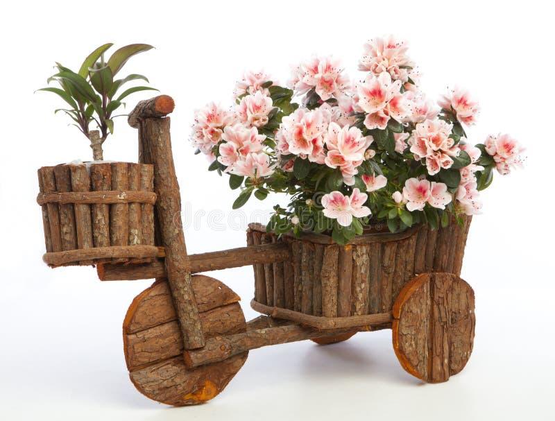 Flowerpot initial photographie stock