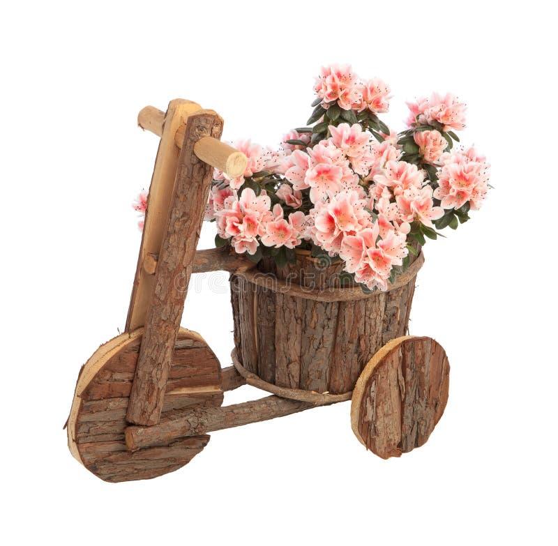 Flowerpot initial image stock
