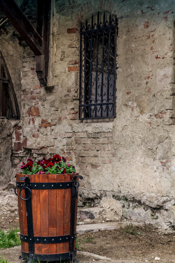 Flowerpot and medieval fortress wall stock image