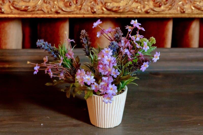 flowerpot O houseplant bonito com o vaso de flores na textura de madeira clara da tabela do escritório e no fundo branco capturou fotografia de stock royalty free