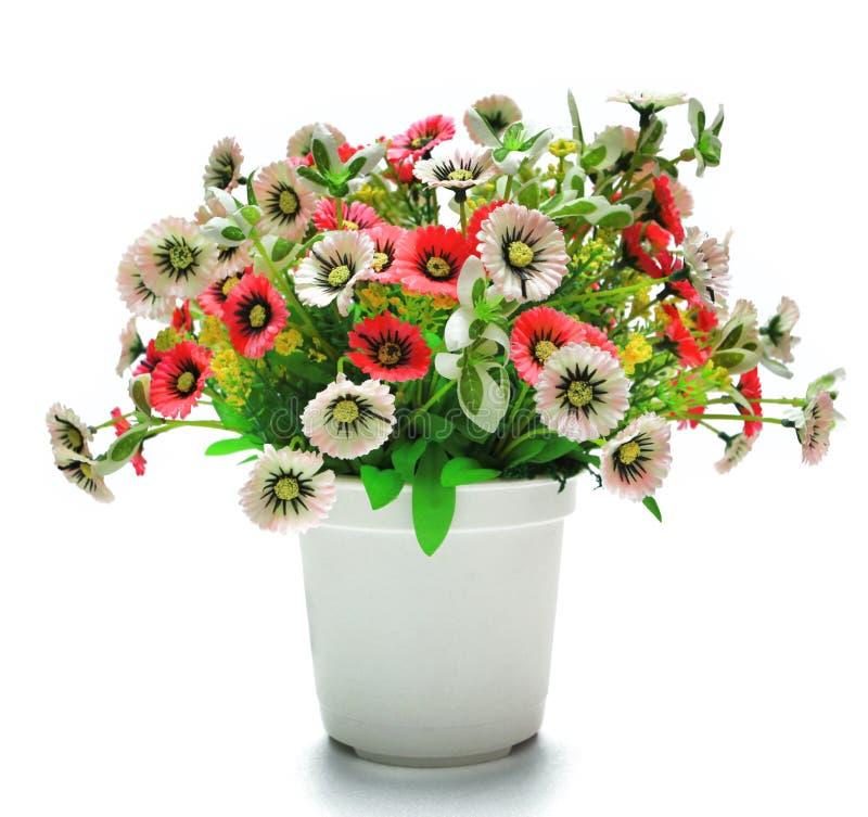 Flowerpot plástico imagens de stock royalty free