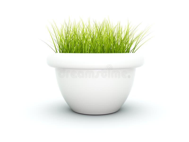 flowerpot trawa ilustracja wektor