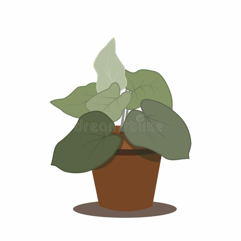 Flowerpot Vector Illustration isolated on white. royalty free stock photos