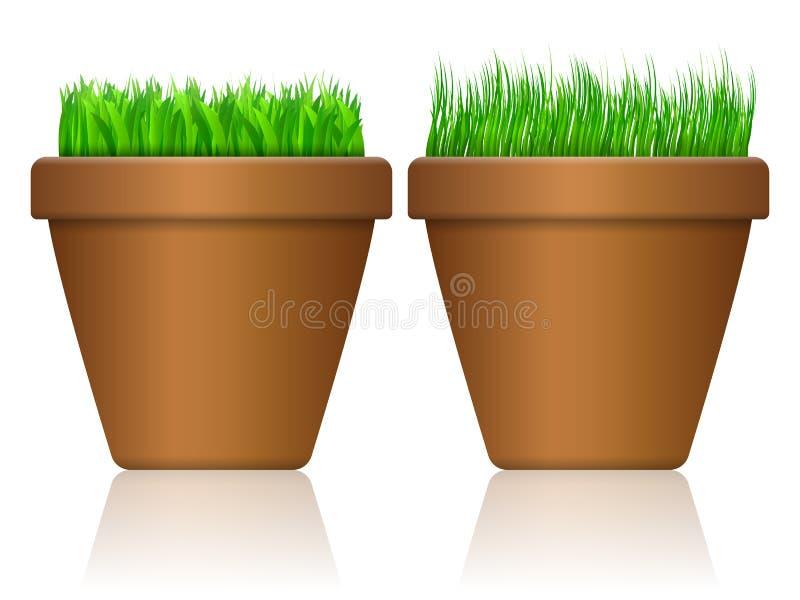 Flowerpot z trawą royalty ilustracja