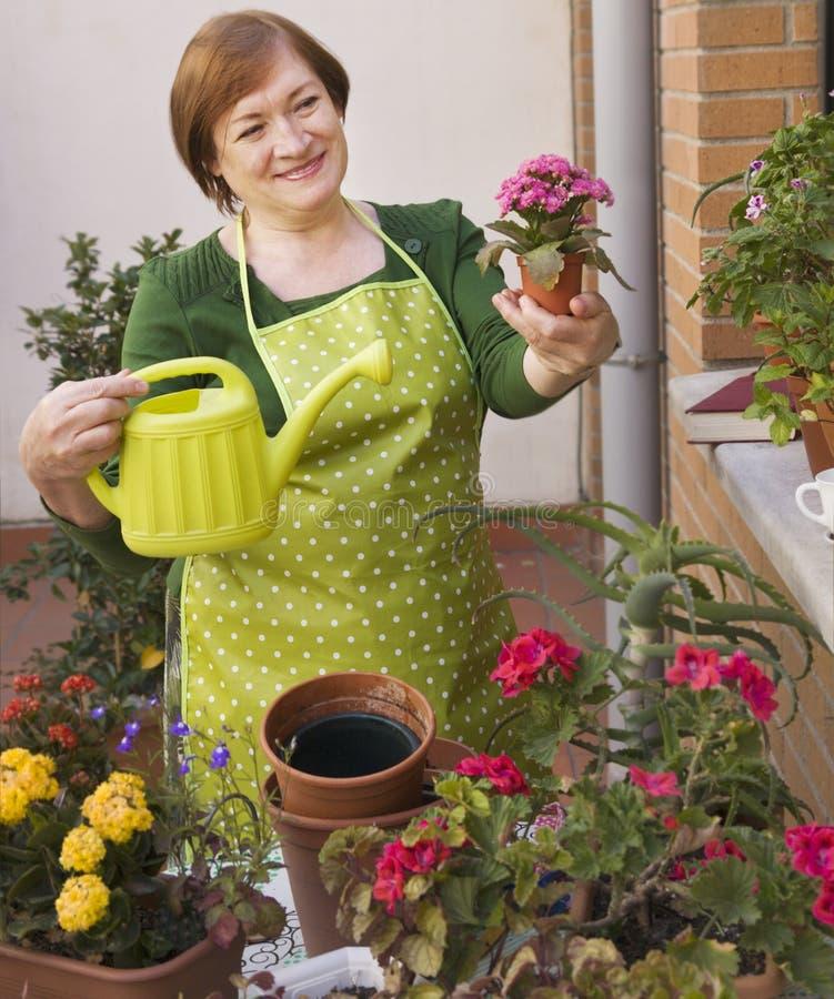 Flowerpots και γυναίκα στοκ φωτογραφία