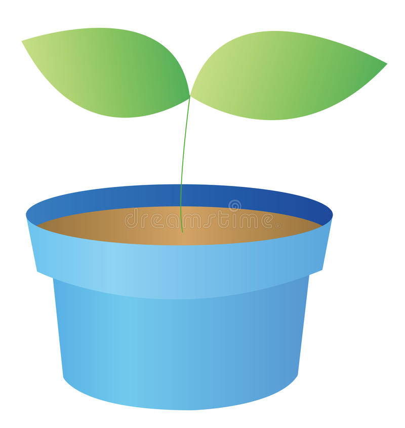 Download Flowerpots Royalty Free Stock Images - Image: 10494949