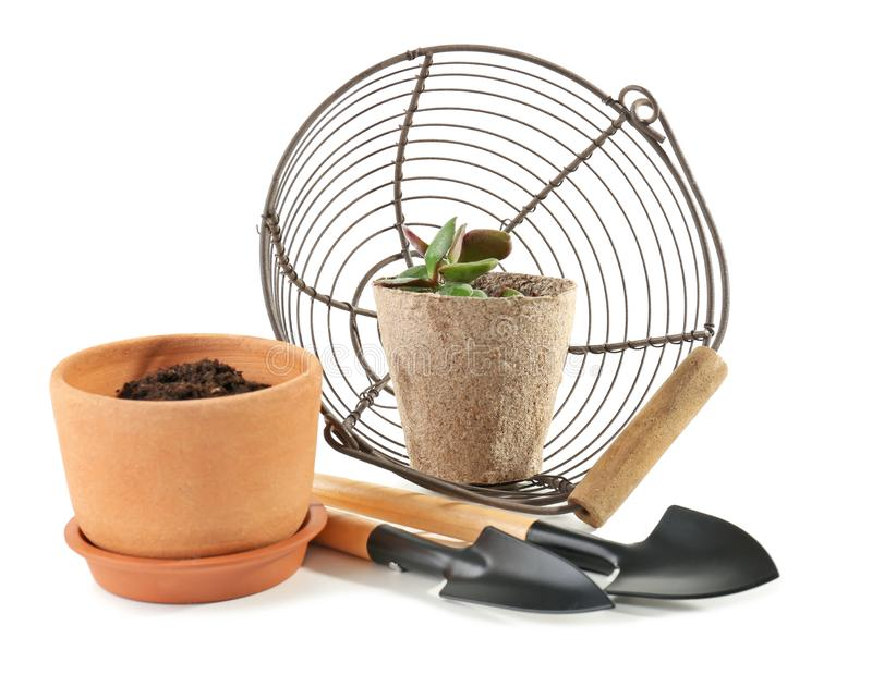 Flowerpots with gardening tools and basket on white background stock images
