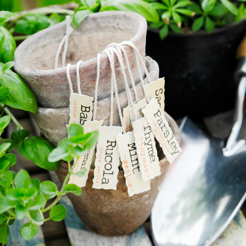 Flowerpots velhos do terracotta fotografia de stock royalty free