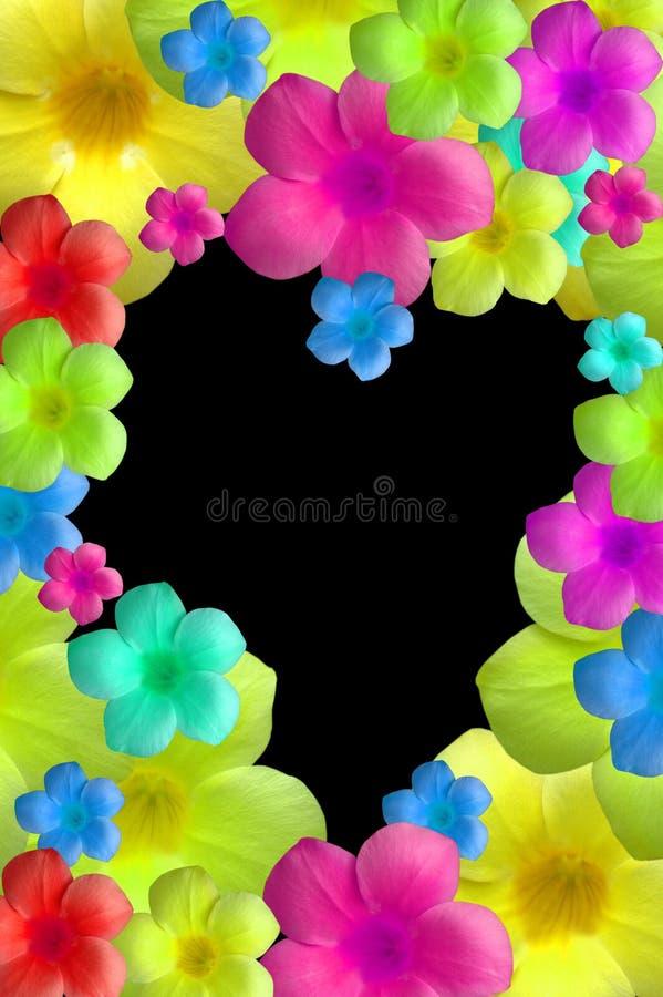 Free Flowers Royalty Free Stock Photos - 1089378