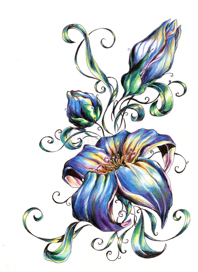 Pattern Flower Drawing With Colour Best 25 Flower Tattoo: Flowers. Stock Illustration. Illustration Of Stars, White