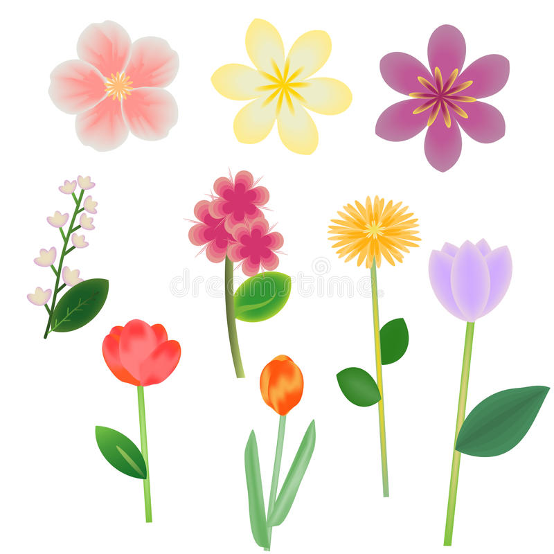 Download Flowers stock vector. Image of garden, foliage, elements - 25078044