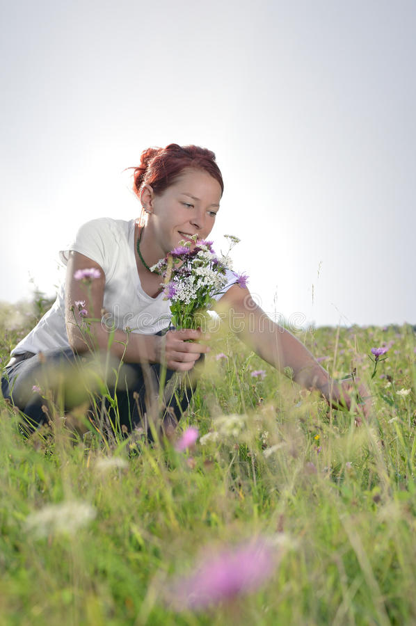 Flowers. Woman picking a bunch of flowers in a meadow royalty free stock photo