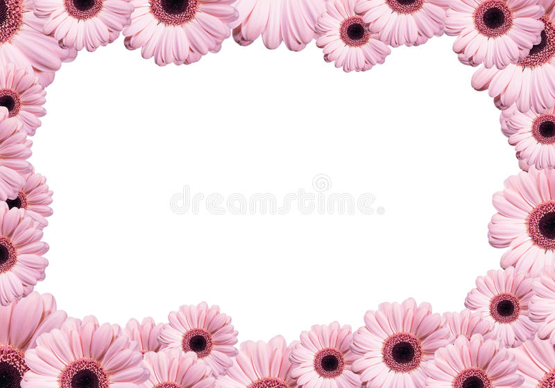 Download Flowers stock image. Image of decoration, space, blank - 29198419