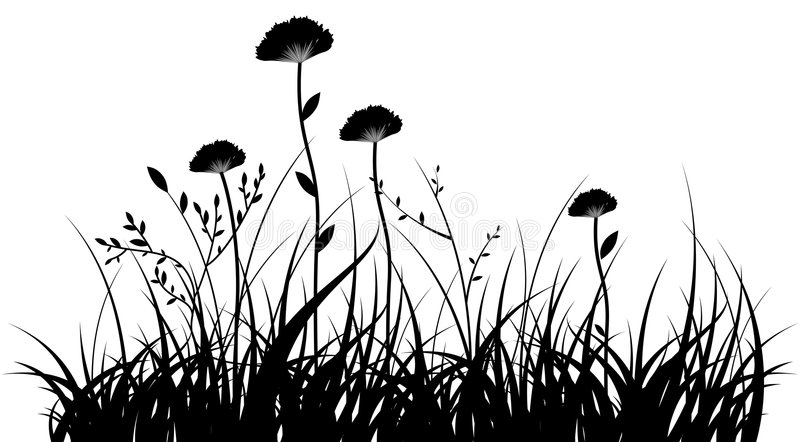 Flowers. Black silhouette of a grass and flowers on a white background