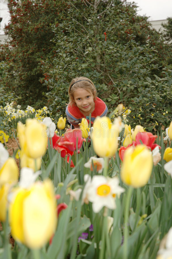 Through the flowers. Little girl leans over and smells the flowers while standing amongst them royalty free stock photos