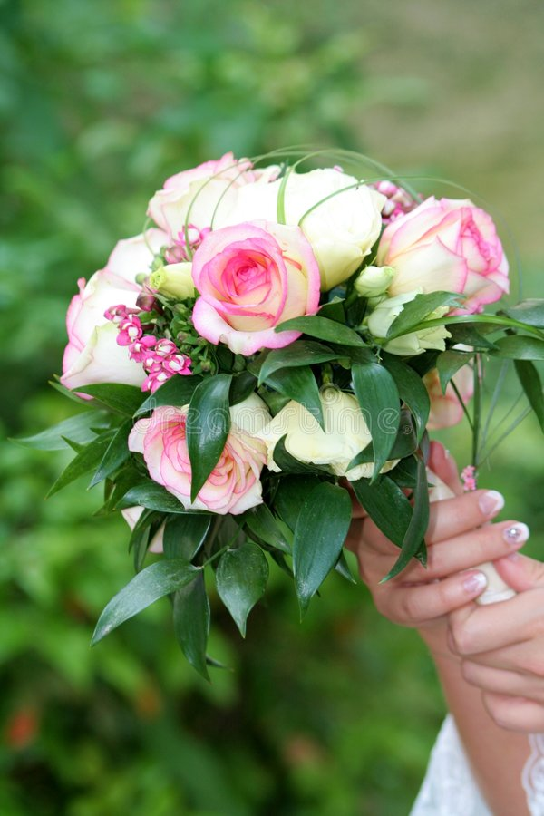 Free Flowers Royalty Free Stock Images - 907469
