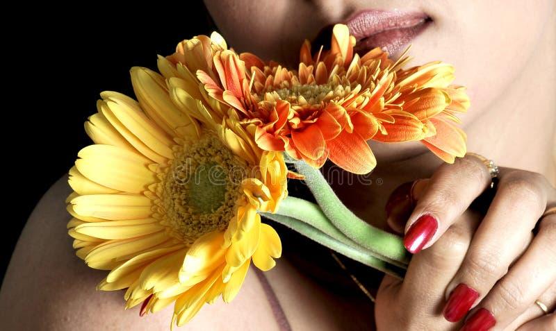 Download Flowers stock photo. Image of beautiful, mouth, diamond - 9577162