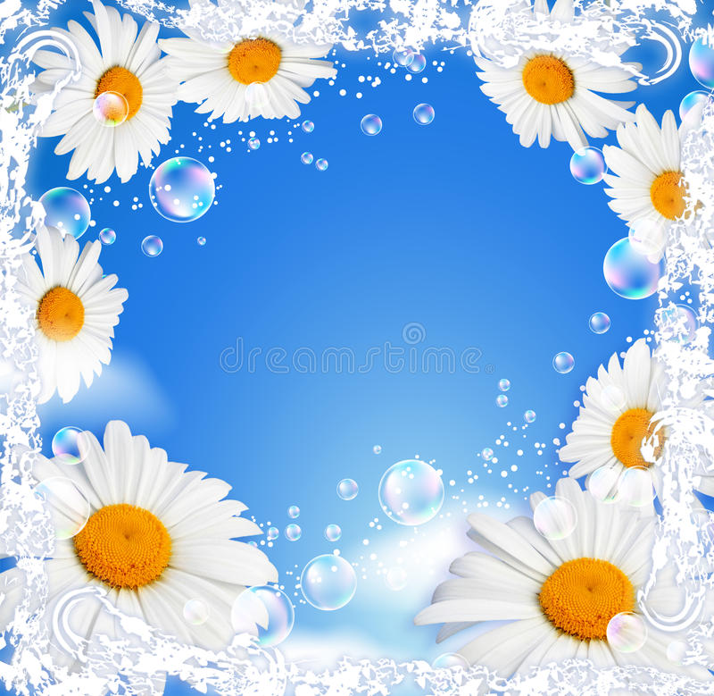 Free Flowers And Transparent Butterfly Stock Image - 20063591