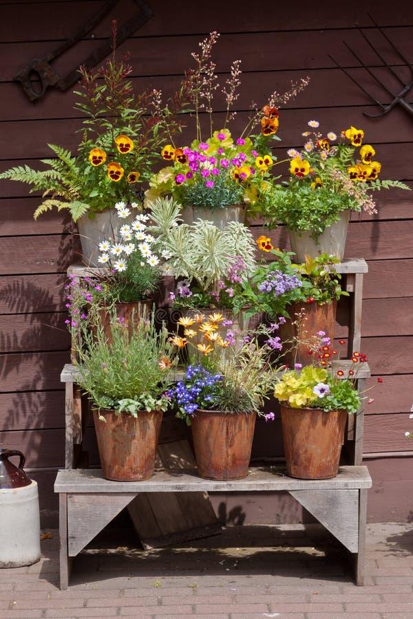 Download Flowers Arrangement stock photo. Image of yellow, bench - 20734810