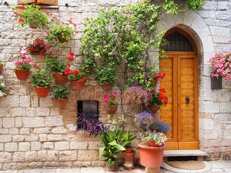 Download Flowers Of Assisi Royalty Free Stock Photo - Image: 24194255