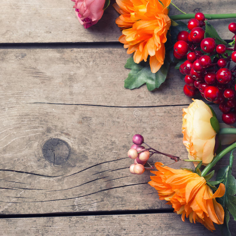 Flowers in autumn colors royalty free stock photography