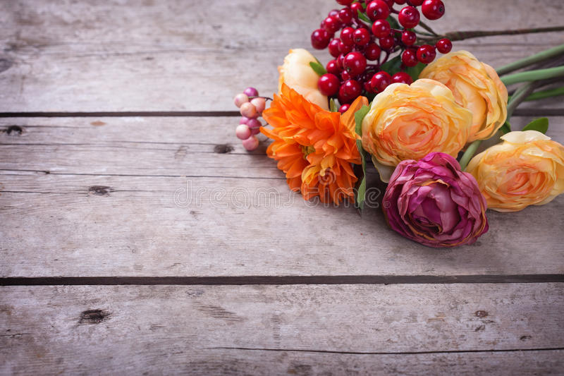 Flowers in autumn colors royalty free stock images
