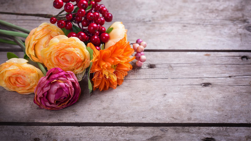 Flowers in autumn colors stock images