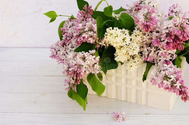 Flowers background. Bouquet of a branch of lilac spring flowers on a white wooden background. stock image