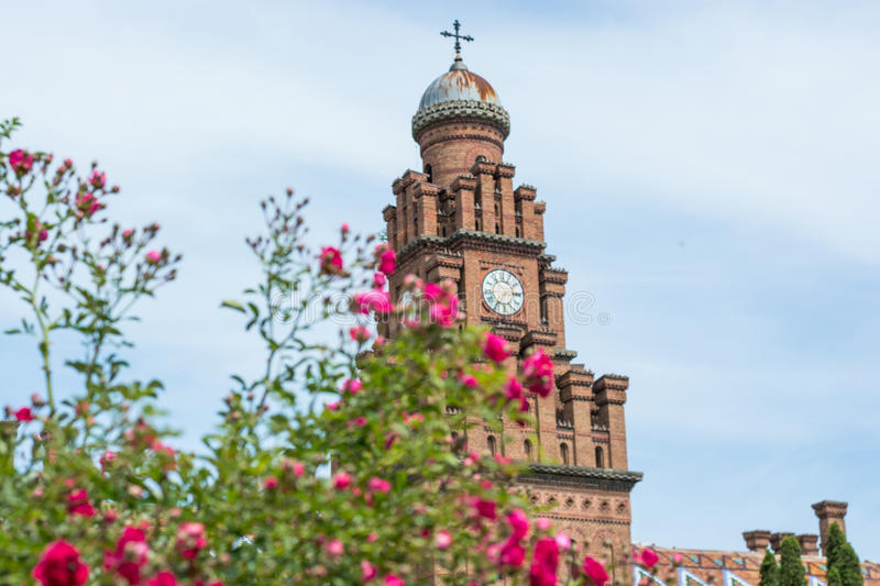 Flowers on the background of a clock tower Chernivtsi National University. Residence of Bukovinian and Dalmatian Metropolitans, Chernivtsi, Ukraine royalty free stock photo