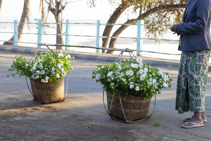 Download Flowers in Baskets editorial photography. Image of vendor - 30440547