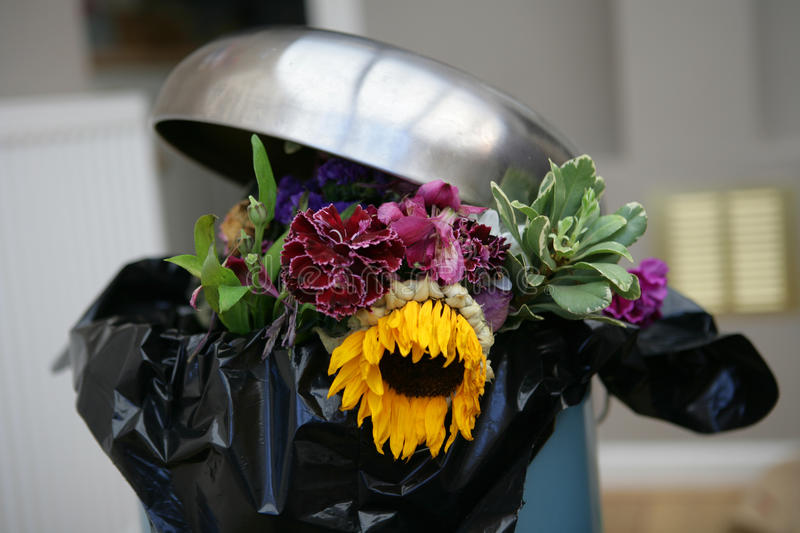 Flowers in a bin. Various dead flowers in a bin royalty free stock images