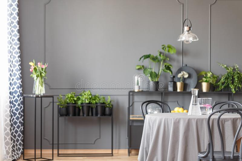 Flowers on black table against the wall with molding in grey res. Taurant interior with lamp. Real photo concept royalty free stock images