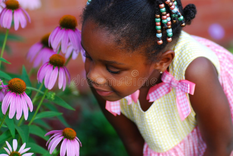 Download Flowers in Bloom stock image. Image of learning, hair - 5588139