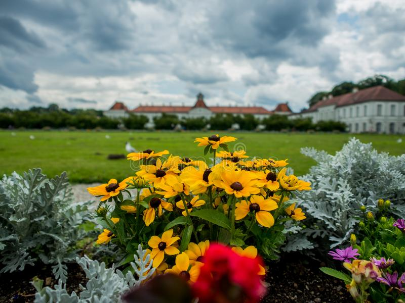 Flowers are blooming in Schloss Nymphenburg royalty free stock photography