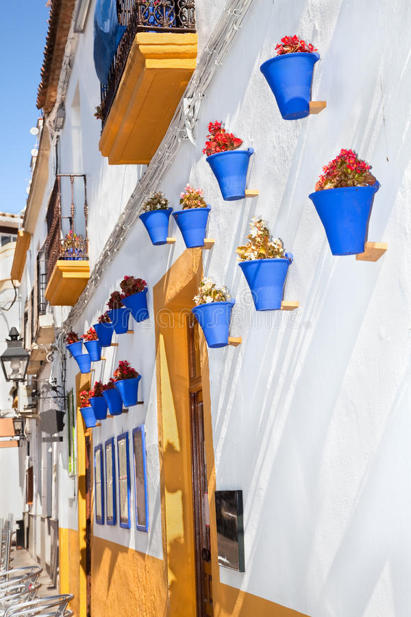 Flowers in blue flowerpot, Cordoba. Spain. Flowers in blue flowerpot on the walls on streets of Cordoba. Spain stock photo