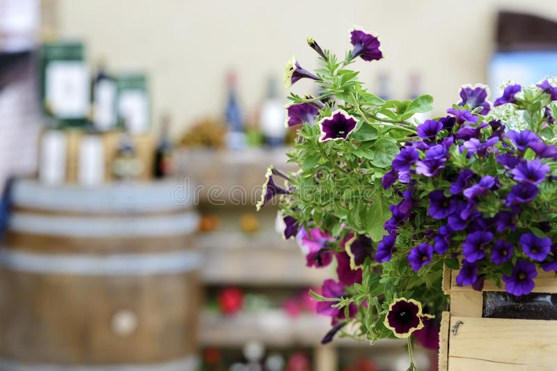 Flowers with blurred wine barrel. And bottles in background royalty free stock photography