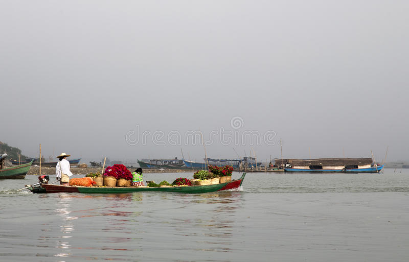 Download Flowers on a Boat editorial stock photo. Image of colorful - 30441123