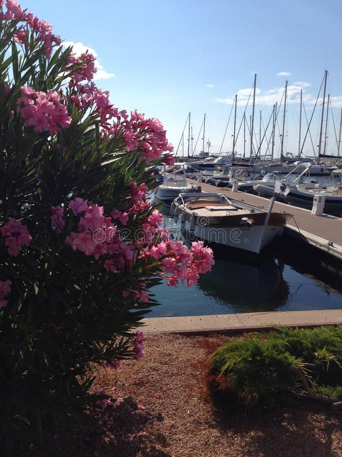 Flowers and boats royalty free stock images