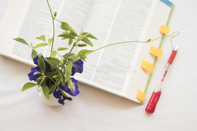 Flowers with book dictionary english for study. On white stock photography