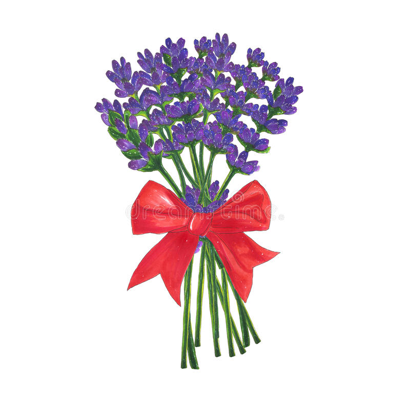 Flowers bouquet of lavender with red bow marker illustration stock illustration
