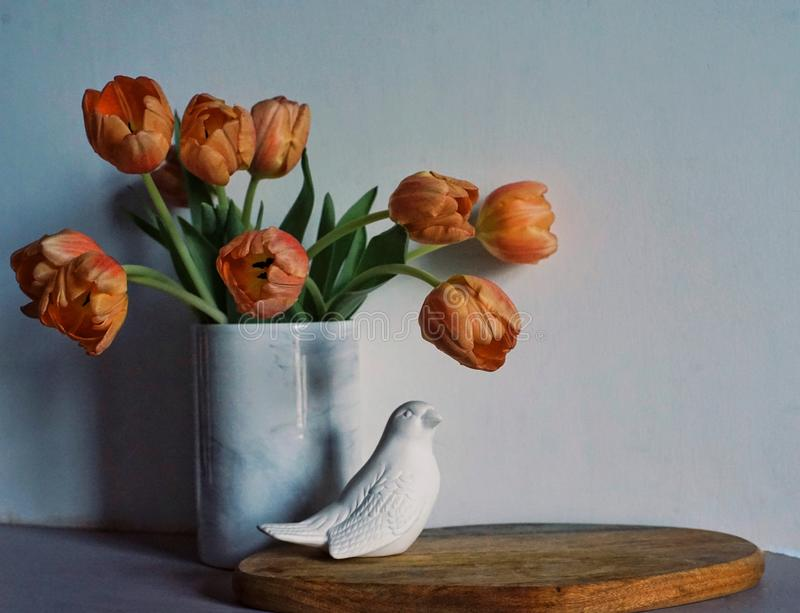 tulips flowers bouquet close-up white vase wall bird indoor stock photo