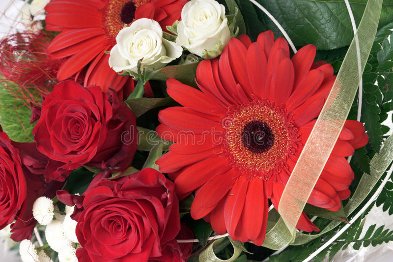Download Flowers stock photo. Image of space, surprise, greeting - 39504914