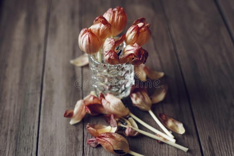 flowers bouquet tulips close-up wood background table royalty free stock images