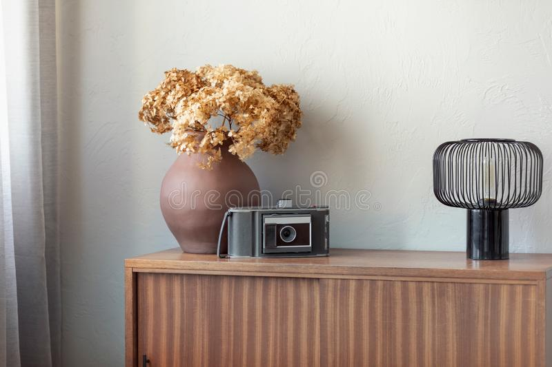 Dry flowers in brown pottery vase next to old vintage camera and industrial lamp on retro wooden cabinet stock photos