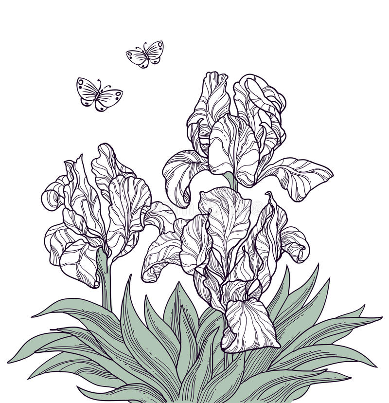 Flowers and butterflies stock illustration