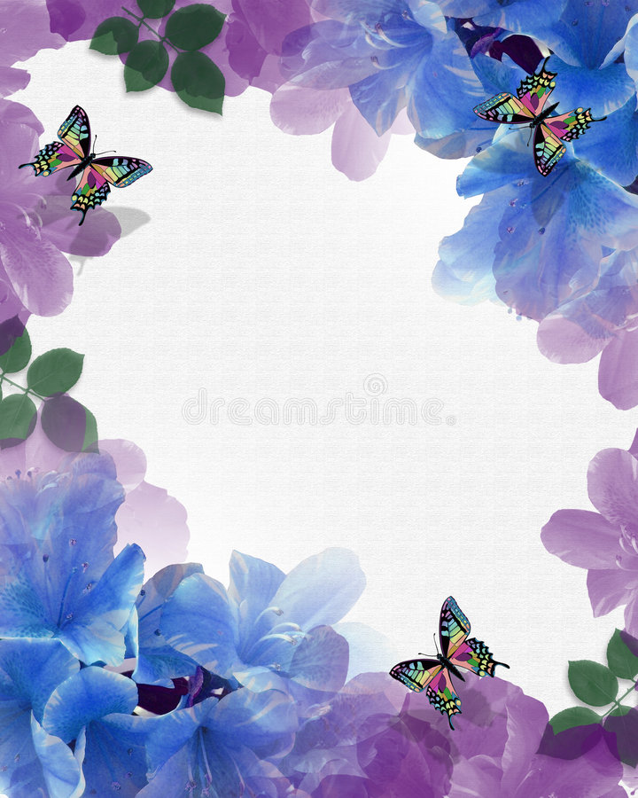 Flowers Butterflies background border vector illustration